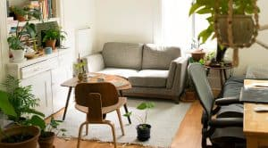 air quality living room